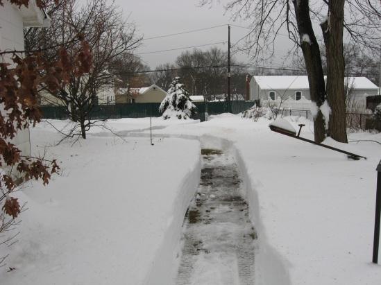 Narrow-minded Snow