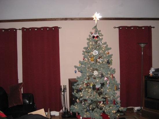 NMP Tree
